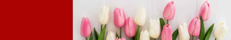 Zdrowych, spokojnych Świąt Wielkanocnych w gronie najbliższych oraz wiosennego optymizmu